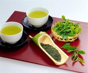Chè Tân Cương - Đệ nhất danh trà ở Thái Nguyên