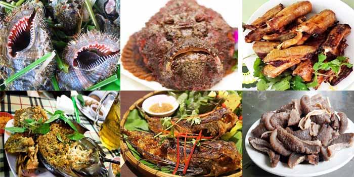 Top 7 hải sản biển Việt Nam, có tiền nên ăn thử